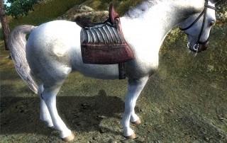 cavallo 4 oblivion