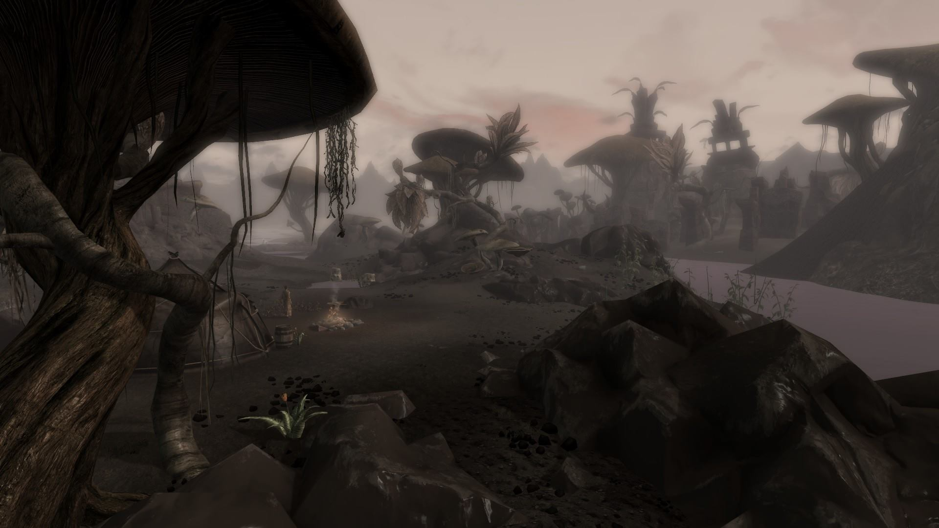 morrowind patch project