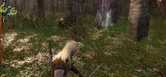Il bosco dei Druidi: una oasi di pace nella pericolosa palude.