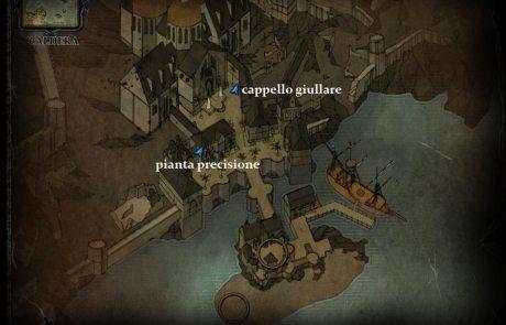 piante-caldera