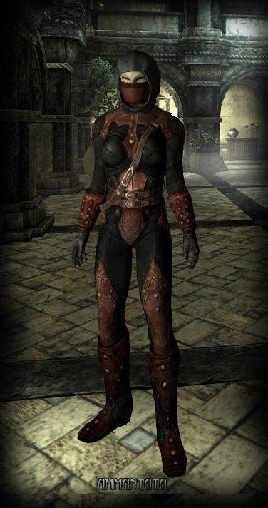 Skyrim: Armature uniche