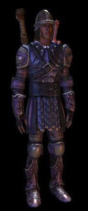 Dragon Age Origins: Set Wade