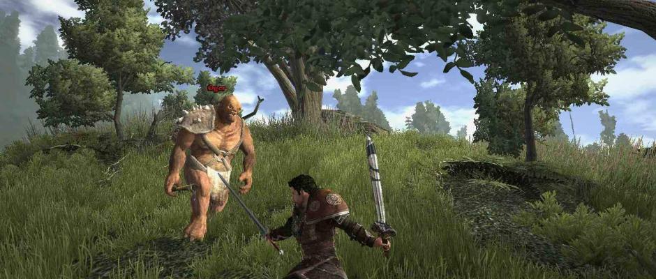 Il combat system è estremamente vivace e immediato.